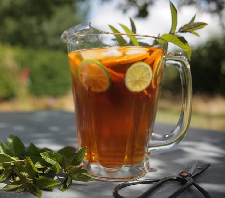 Iced Tea Pitcher - Facts